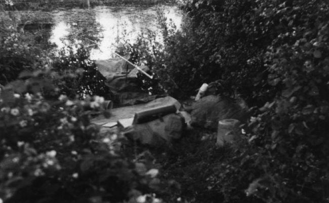 Imagine care dateaza din anul 1950