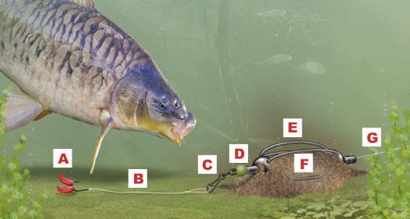 Montura feeder in-line